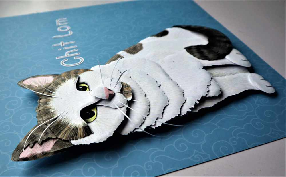 Tabby and white cat pet paper portrait